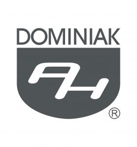 C egzemplifikacja Henryk Jan Dominiak