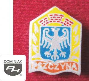 Pszczyna miasto w Polsce historia i teraźniejszość